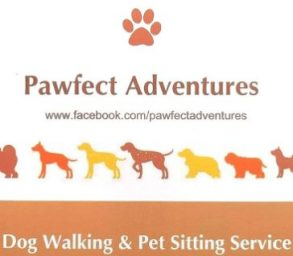 Pawfect Adventures Colchester
